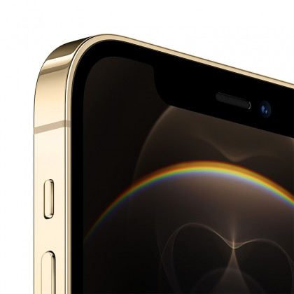 iPhone 12 Pro 256GB (Gold)