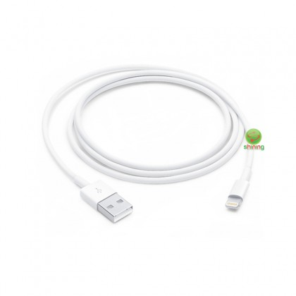 Apple Lightning to USB Cable 1m White